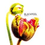 Blackpool Amazing