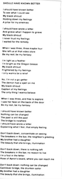 Sufjan Stevens Should have Know better lyrics